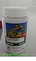 Гербицид Сальса 0,1 кг, фото 1