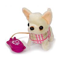 """Мягкая игрушка «Chi Chi Love» (5892716) собачка Чихуахуа """"Крошечный пешеход (Tiny Walker)"""" на дистанционном управлении, 13 см"""
