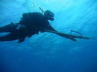 Как выбрать и купить ружье для подводной охоты