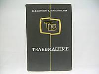 Костыков Ю.В., Крыжановский В.Д. Телевидение. Физические основы.