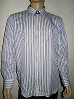 Рубашка мужская в цветную полоску Aygen, фото 1