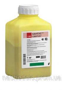 Фунгицид Кантус 1 кг (свитч, хорус) BASF