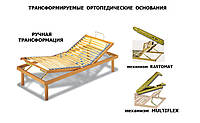 Мультифлексы, Растоматы, механизмы трансформации