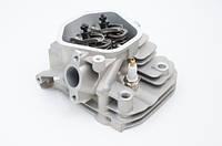Головка в сборе двигателя 177f 9л.с.