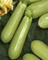 Семена  кабачка  KS 140 F1 500 семян Kitano Seeds