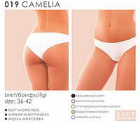 Трусики Kleo 019 Camelia (цвет: пион)