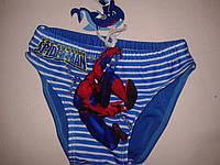 Плавки на мальчика Spiderman, 4-8 лет