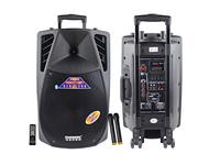 Temeisheng F18S с bluetooth 2 микрофона пульт аккумулятор