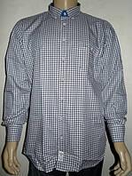 Мужская рубашка Aygen (Турция) в коричневую клетку