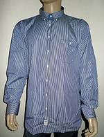 Мужская рубашка в многоцветную полоску, фото 1