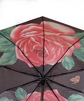 Женский зонт Star Rain полуавтомат, 10 спиц, разные цвета