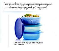 Набор  мисок (600мг) для хранения и транспортировки продуктов от Tupperware®