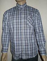 Хлопковая рубашка в серую клетку Aygen Pronto Moda
