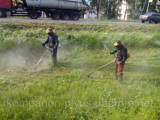 Покосить траву