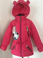 Куртка демисезонная для девочек 216-01