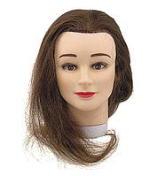 Голова-манекен учебная 35см SІbel 0030201