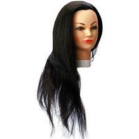 Голова-манекен навчальна 60см SІbel 0030551