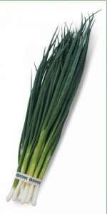 Семена лука на перо Вулкан 20 гр. Kitano Seeds
