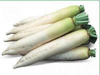 Семена редиса дайкон Титан 250 гр. Kitano Seeds