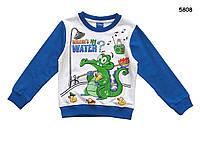"""Кофта """"Крокодил Свомпи"""" для мальчика. 95, 140 см, фото 1"""