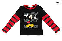 Кофта Mickey Mouse для мальчика. Большемерит.   4, 6, 8 лет, фото 1
