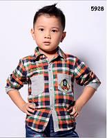 Рубашка Thomas для мальчика. 100 см