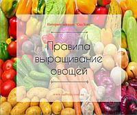 Правила выращивания овощей