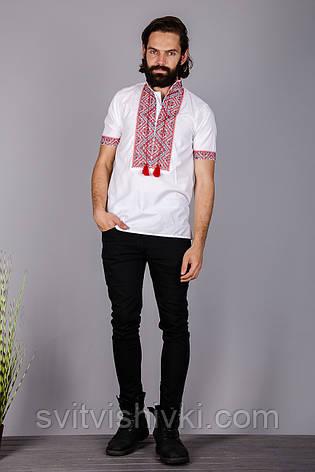Чоловіча вишита сорочка на короткий рукав, фото 2