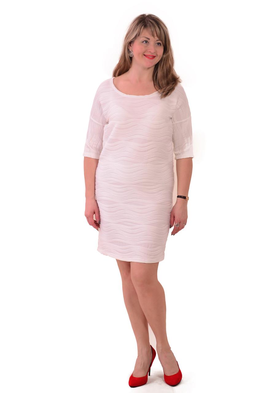 Платье зефир белое и черное , трикотаж , Пл 052.
