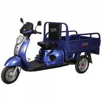 Грузовой мотоцикл SP 110 TR-4