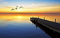 "Фотообои ""Чайки на море"""