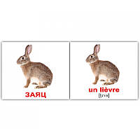 "Карточки мини русско-французские ""Дикие животные/Les animaux sauvages"" 20 карт., 096570"