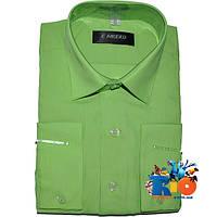 Детская рубашка с длинным рукавом арт.112-3 , для мальчика (р-р 29-36)