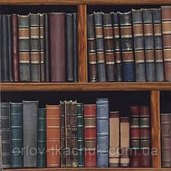 Ткань для штор BIBLIOTHEQUE CARROUSEL