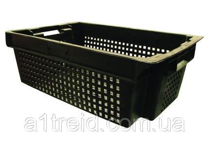Ящик пластиковый, 600х400х200 мм