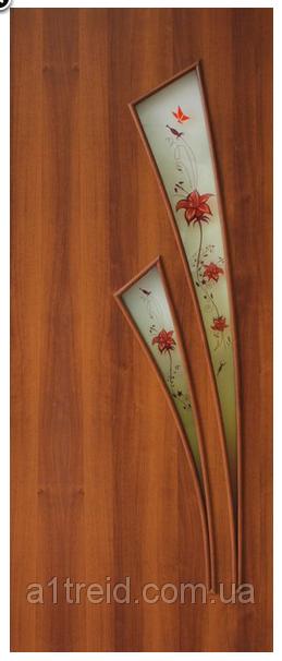 Двери с фотопечатью на стекле Триумф ФП Омис