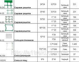 Садовая  решетка ячейка-ф35 35*40 0,5*20м, фото 3