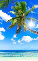 """Фотообои """"Синее небо над морем"""", Фактурная текстура (холст, иней, декоративная штукатурка)"""