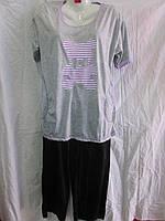 Женский костюм  (р.XL-5XL) №5696-7