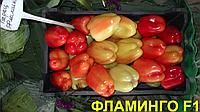 Семена перца сладкого Фламинго F1 5 гр. Clause Seeds