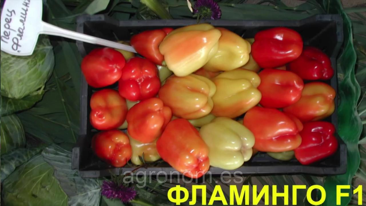 Семена перца сладкого Фламинго F1 50 гр. Clause Seeds