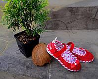 Пинетки топочки в садик