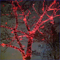 Светодиодная гирлянда красная дождь 2*1.5м прозрачный ПВХ