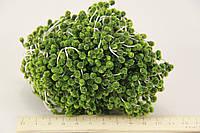 Цветочная тычинка с блестками зеленая 0,5см  850шт