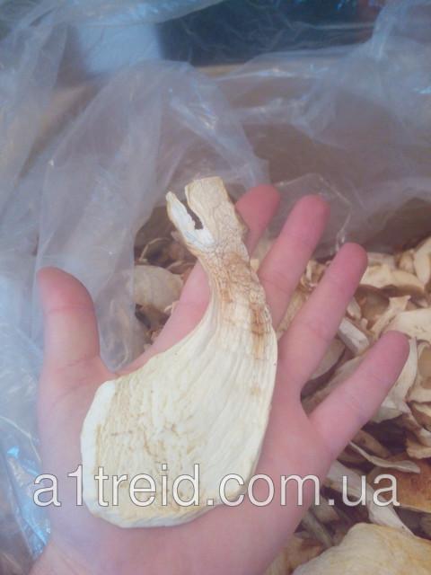 Купим белые сушеные грибы от 5 кг