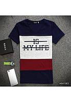 Мужская футболка №1039 АА2431