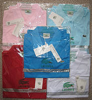 LACOSTE женская футболка поло лакоста лакосте купить в Украине.
