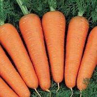 Морква ВІКТОРІЯ 2.0 - 2.2 Seminis 1 млн. насінин (можливий безнал), фото 1
