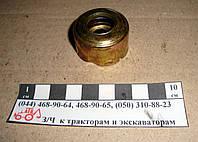 Сальник водяного насоса МТЗ 240-1307030