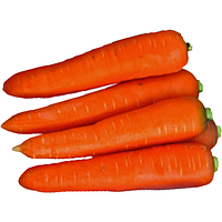 Морква Курода (Kuroda)10 кг.